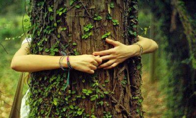 pessoa abraçando e sentindo uma arvore