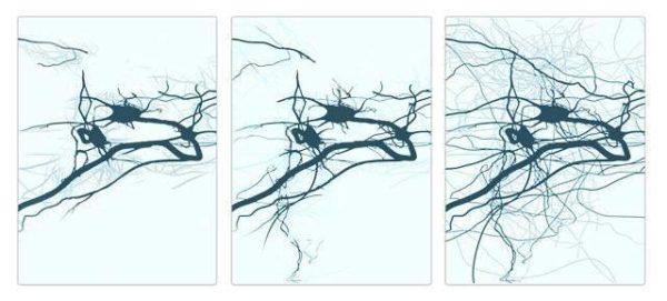 o que é neuroplasticidade