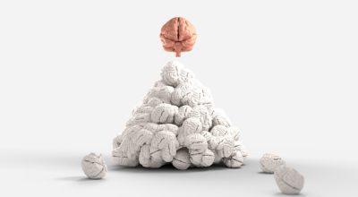 cérebro se destacando de outros por cor