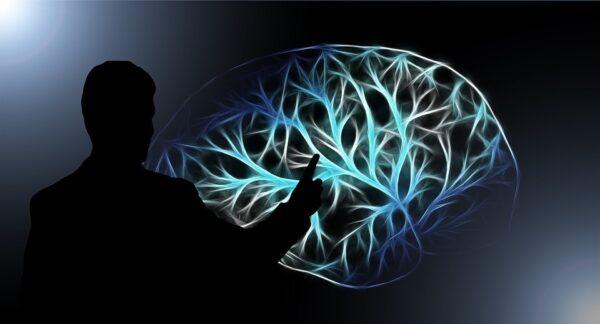 imagem de neuroplasticidafe cerebral e aprendizado