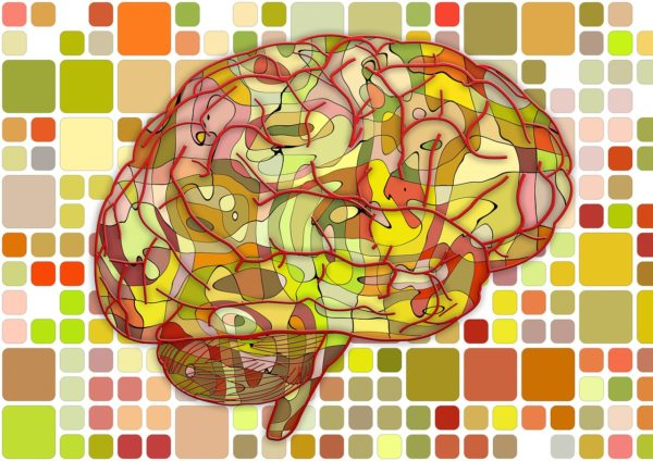 ilustração do cérebro com várias cores e ligações