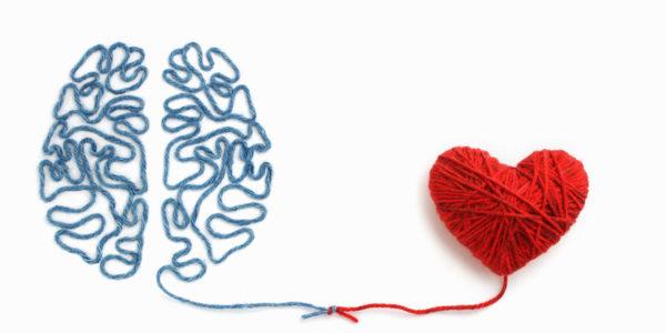 um cérebro sendo criado por linhas do coração