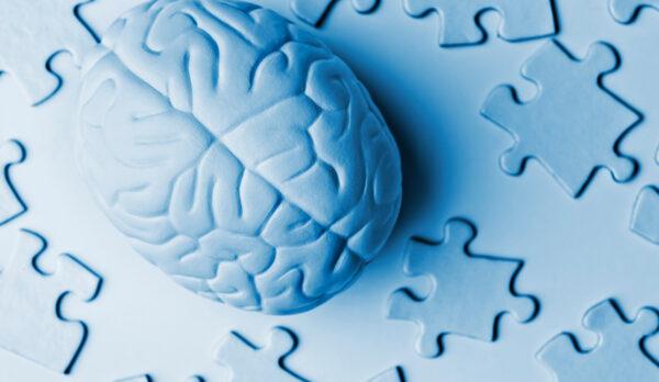 quebra cabeças sobre a memória humana