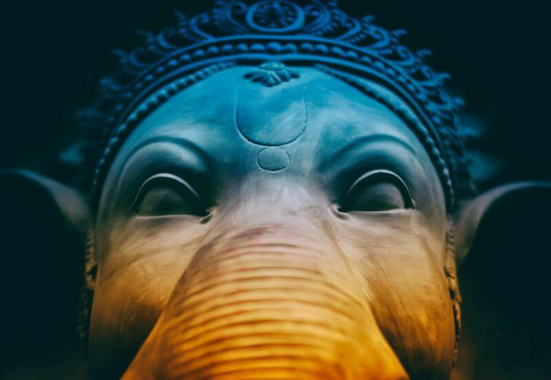 como ter uma verdadeira memória de elefante