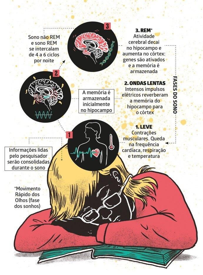 infográfico sobre o sono e a memorização