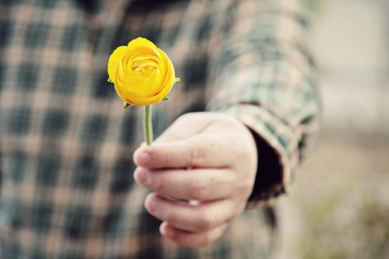 pessoa entregando uma flor amarela